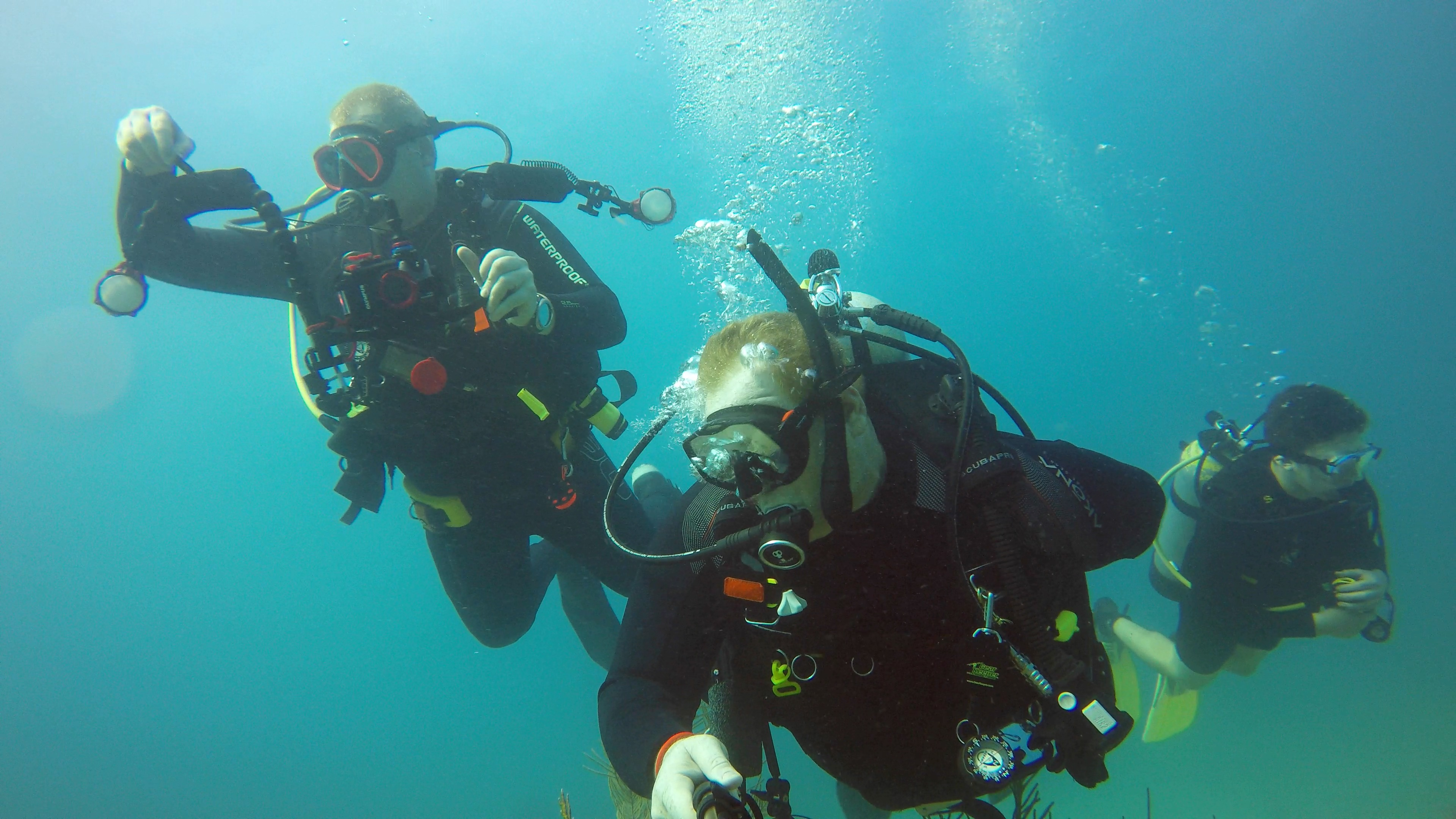 Diving with Amine and Ryan